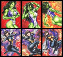 SHE HULK AND WASP PERSONAL SKETCH CARDS by AHochrein2010