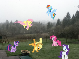 Ponies in the yard! by rpm1337