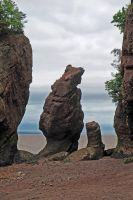 Hopewell Rocks 11 by LucieG-Stock