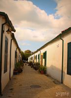old houses of Northern Cyprus by mabelzey