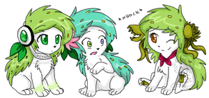 maito's shaymins 2 by mr-tiaa