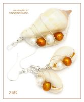 Shells and Brown Pearls - Z189 by AnnAntonina
