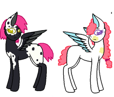 Customs by MagicalPony450
