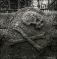 Skull And Crossbones by Estruda