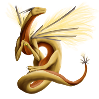 Anba's Dragon by DraceVestell