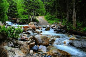 Rize Ayder by qokhanss