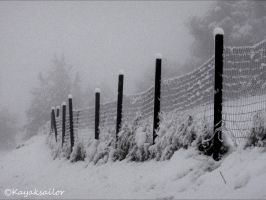 Snowy fence by kayaksailor
