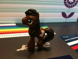 Custom MLP : BB Dr. Whooves by marienoire