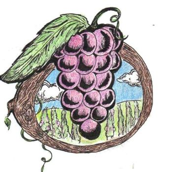 Grapes by Ecroy
