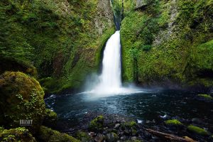 Wahclella Falls by brandtcampbell