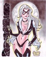 'Cartoon' Black Cat (#1) by Rodel Martin by VMIFerrari