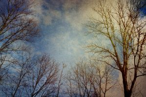 sky of spring by incolorwetrust