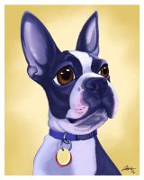 Riley the Boston Terrier Caricature by CharReed