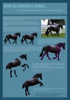 Horse Rebuilding Tutorial by ExquisArt