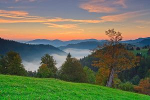 Autumn in Bukovina by lica20