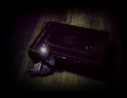 Book of secrets IV by illusiondevivre