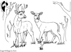 Color-Me: Two Deer by Magnum-Arts