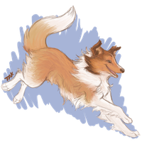 Collie Commish by TaksArt