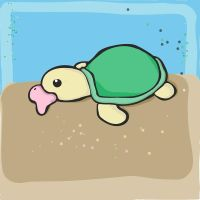 Turtle by sinui