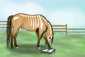 Draw My Padros Challenge for ArtOfFreedom 1/2 by HorsePonyGal
