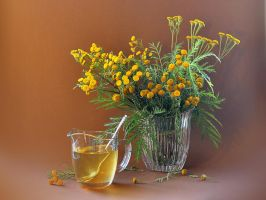 Tansy and honey by mariall