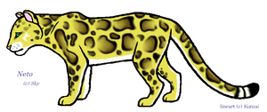 Neto- Aquatic Clouded Leopard by Sky-Lily