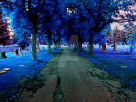 Blue Trees by ladytcreations