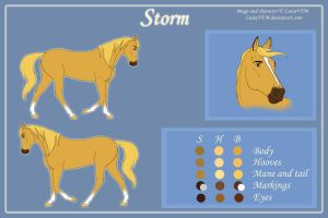 Storm Reference by LuisaVFM