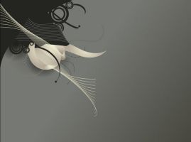 A pretty girl by shawkash