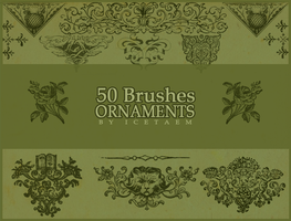 Ornaments Brushes II by Icetaem