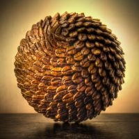 Coffee Ball by Guilletas