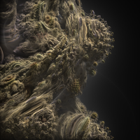 Edge of a Mandelbulb by cab1n
