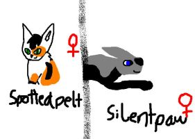 Spottedpelt and Silentpaw by Sunfall16