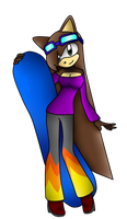 Sarah's Sonic Riders outfit by SarahtheCatlove