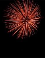Firework by Art-ography