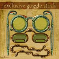 Exclusive Goggle Stock by Toefje-Kunst