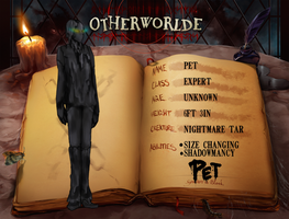 OW: Pet Year 5, 6, 7, 8 by Rndom-Obsessions
