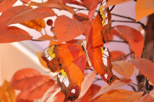 ..cos innego...butterfly.. by Piotromania