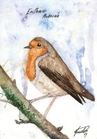 Erithacus Rubecula by HeartSoulLifePassion