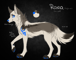 Raea Ref Sheet by Reneah