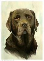 Brown Labrador Comission painting by Hollow-Moon-Art