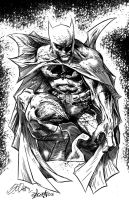 Batman Inks by DontBornInInk