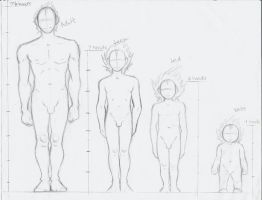 Male Body Proportions Study by THEAltimate
