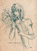 Sketch - Lilies by quinkee