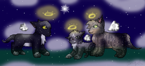 Even Kittypets Go To Starclan by GrowlitheArtistGirl