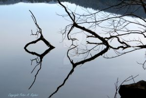 Sterling Lake Still Life Waterscape by peterkopher