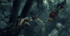 Tomb Raider: The Bow... by WaveSeeker90