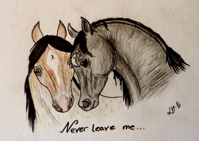 SSS Never leave me... by Faejala