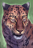 Amur Leopard by soulwithin465