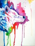 Rainbow Wolf 3 by Lucky978